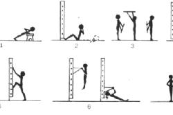 Упражнения со скамейкой и шведской стенкой
