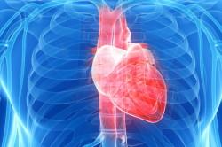 Увеличение частоты сердечных сокращений - признак пониженного давления