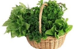 Сбор лекарственных трав для лечения синовита коленного сустава