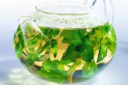 Польза чая из крапивы при розацеа