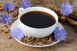 Чай с цикорием при заболеваниях селезенки