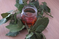 Ингаляции отваром лаврового листа при синусите