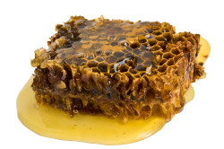 Прополис для лечения рака печени