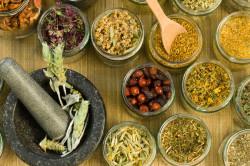 Лечебные свойства трав при катаракте