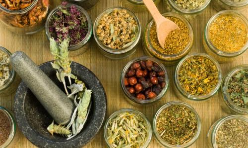 Лечебные свойства трав при геморрое